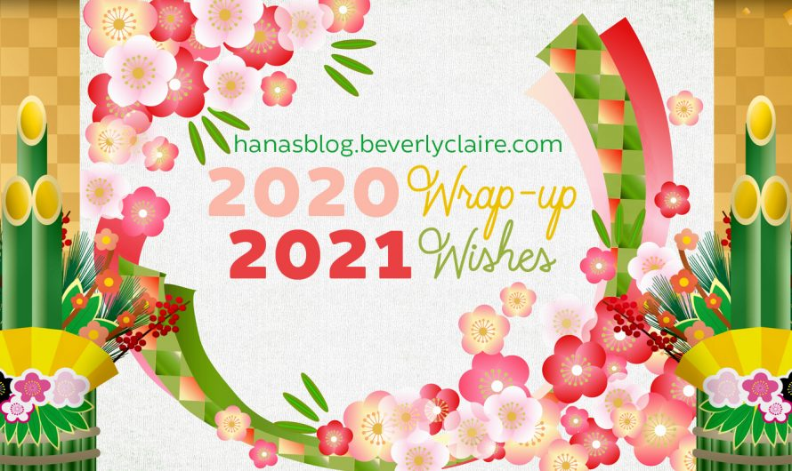 2020 Wrap-up and 2021 Wishes